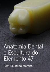 Anatomia Dental e Escultura do Elemento 47